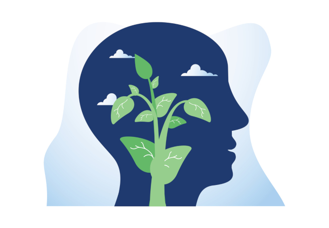 The Growing Interest in a Growth Mindset